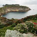 Burgess Island