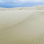 Te Paki sand dune photo